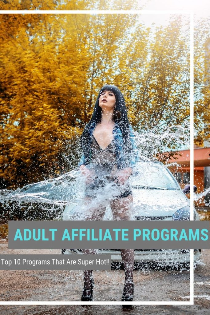 Adult Affiliate Programs